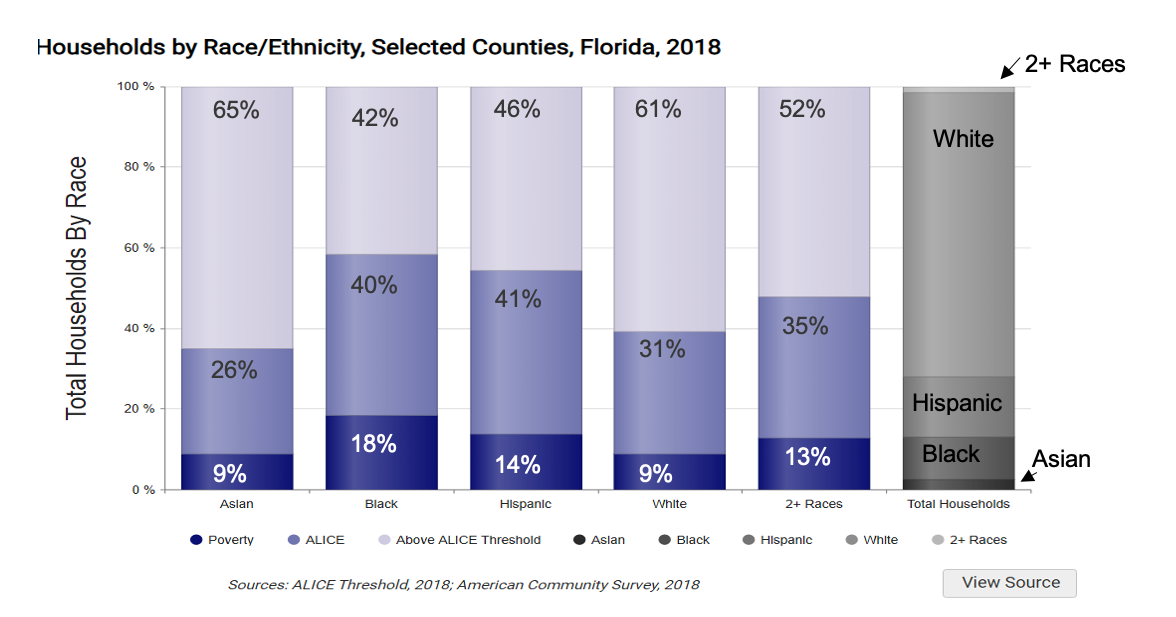 Households by Race/Ethnicity in Selected Counties of Florida in 2018